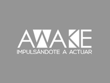Revista Awake